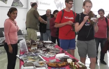 (Video) Pasajeros son recibidos con detalles y productos por parte del Ministerio de Turismo