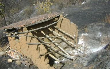 (Video) Más de 200 hectáreas y 3 viviendas fueron afectadas por incendio en El Tambo