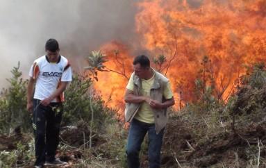 Dificultades para apagar incendio forestal en Azuay