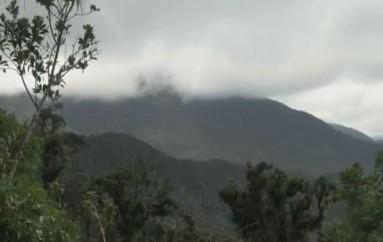 (Video) Varias actividades se realizarán por los 33 años de la Declaratoria del Parque Nacional Podocarpus.