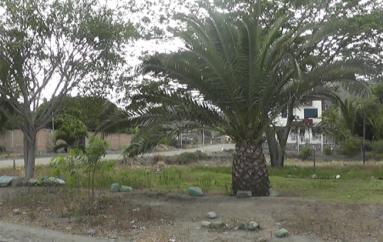 (Video) Morador pide al Gobierno Local intervenir en necesidades de San José.