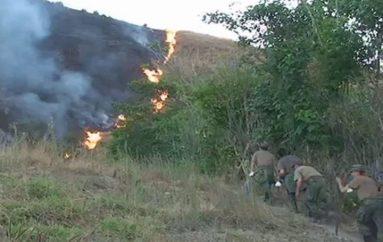 (Video) Impulsan campaña para prevenir incendios forestales en la provincia de Loja.