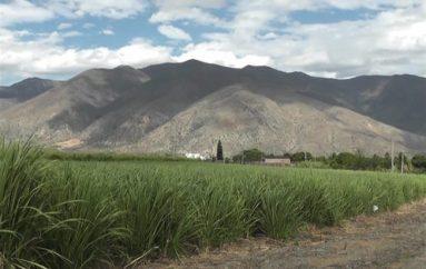 (Video) Resolución del MAE dispone a MALCA pagar $30.012,00 por daños ambientales en La Vega