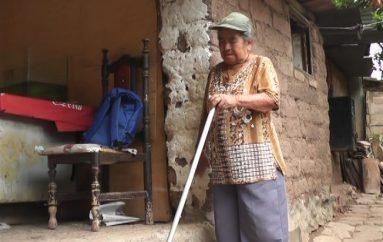 Dolores Gaona; Personaje de Mi Tierra