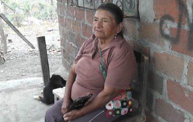 Celia Carmona; Personaje de Mi tierra