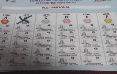 (Video)   Consignación de voto en plancha y nulo.