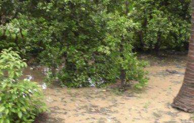 (Video) 15 minutos de lluvia ocasionó varios daños en Catamayo.