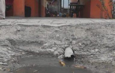 (Video) Morador de Los Tejares pide al Municipio la construcción de alcantarillado