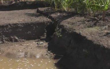 (Video) Morador pide a departamento municipal inspeccionar actividades de riego en Trapichillo