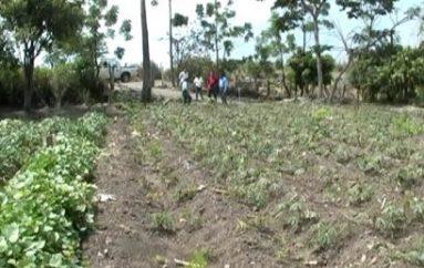 (Video) Ex-candidato a concejal rural asegura que autoridades muy poco visitan zonas de producción