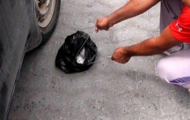 (Video) 12 Personas sancionadas económicamente por arrojar basura en la Calle
