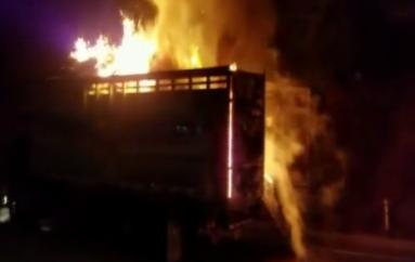 (Video) Vehículo se incendió en la vía Catamayo-San Pedro de la Bendita.