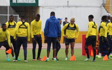 ¿Quién es el entrenador ideal para la selección ecuatoriana de fútbol?