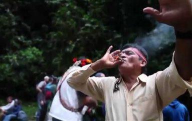 Pachamama raymi se desarrolló con éxito en Zamora Chinchipe