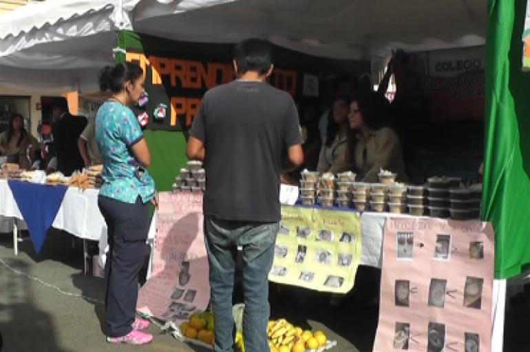 (Video) Distrito de Educación 11D02 realizó una feria de exposición en Catamayo.