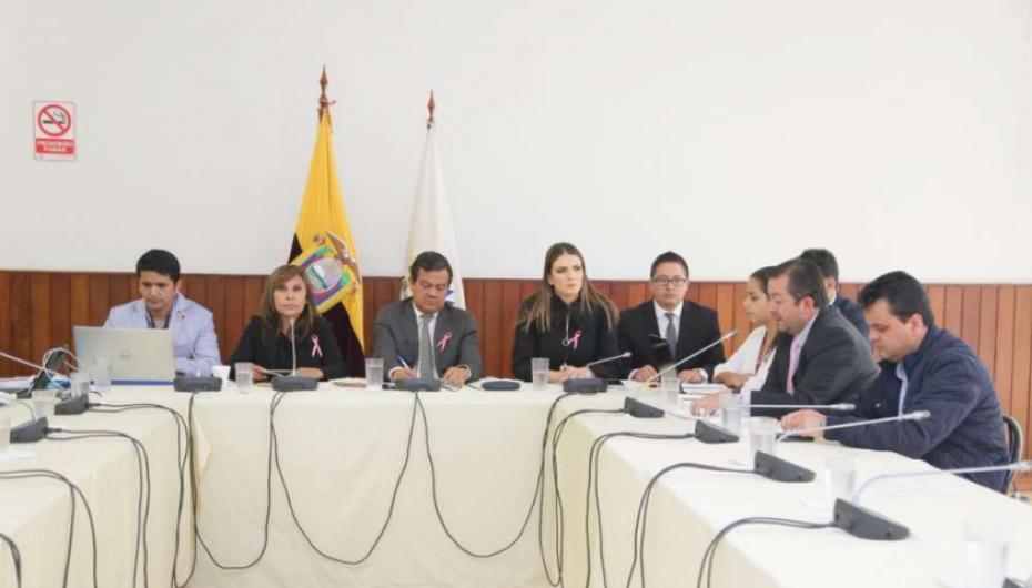Norma Vallejo vulneró derechos laborales, según asambleísta Villamar