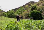 (Video) El temporal de lluvias beneficia a los agricultores de la Parroquia El Tambo.