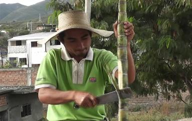 Pablo Pinzón; Personaje de mi tierra