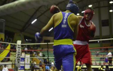 (VIDEO) Existe predisposición para desarrollar un Torneo de Box en Zamora