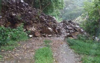 (Video) Ciudadano asegura que caminos a lugares turísticos de El Tambo están obstruidos