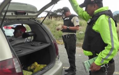 (Video) Personal del Control Integrado elabora las 24 horas en el ex-peaje.