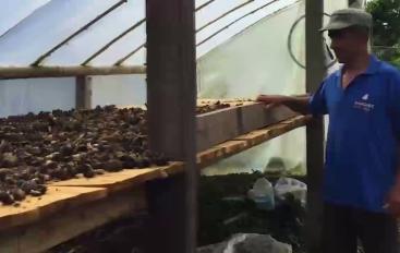 (Video) Ministerio de Agricultura y Ganadera incentiva en la producción para la exportación.